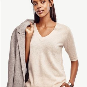 Ann Taylor Cashmere Short Sleeve Sweater In Tan